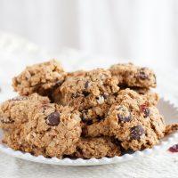 Cranberry Dark Chocolate Breakfast Cookies