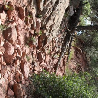 Garden of the Gods photo by Goodie Godmother