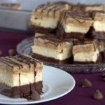 What's better than a Girl Scout Samoas cookie? Nothing, but these Samoas cheesecake bars come in at a very very very close second.