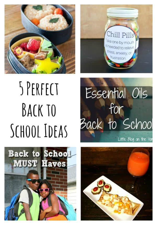 Tips for everything you need for back to school. From health, to lunch, and a little celebration, these easy back to school ideas are sure to make your fall special!