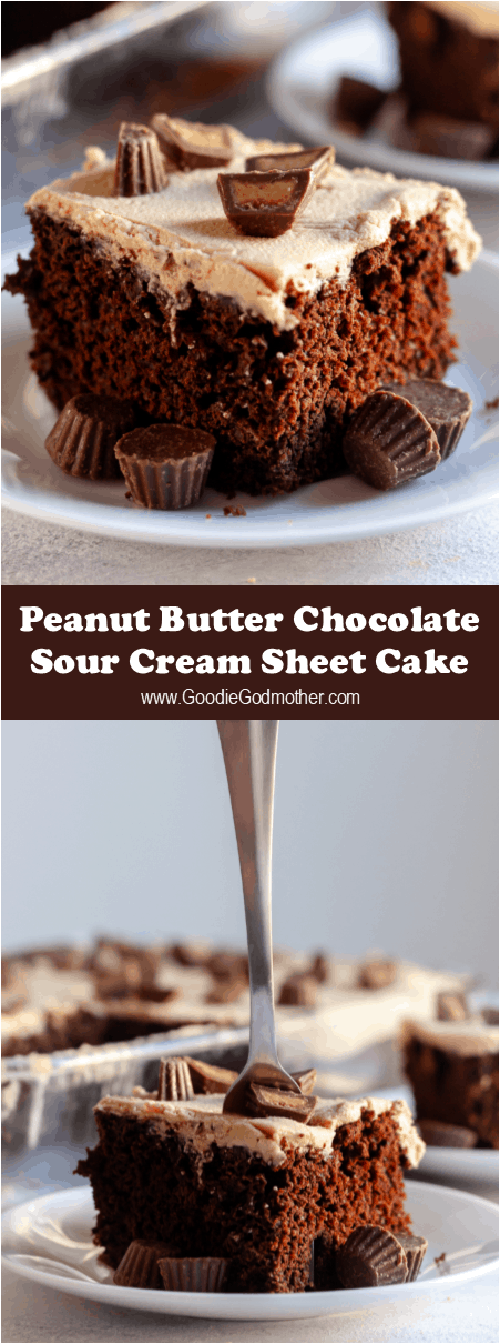 Easy and unfussy, this peanut butter chocolate sheet cake is comfort food in a casserole dish. Sheet cakes are great for a crowd, or dessert for a few days! * Recipe on GoodieGodmother.com #peanutbutter #chocolatecake #easycake #sheetcake