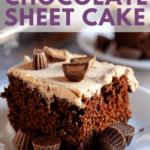 easy sour cream chocolate sheet cake recipe